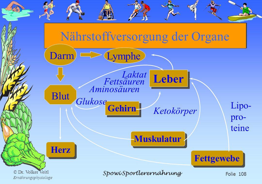 Spowi Sportlerernährung Folie 108 © Dr. Volker Veitl Ernährungsphysiologe Nährstoffversorgung der Organe Gehirn Ketokörper Leber Muskulatur Laktat Glu