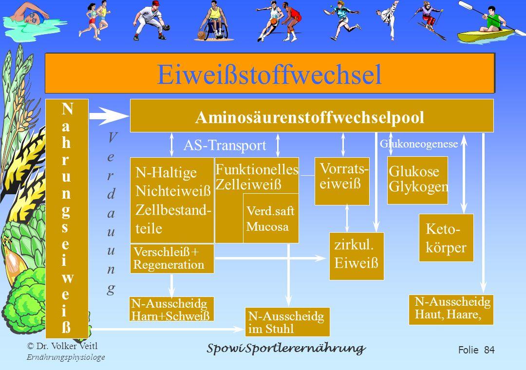 Spowi Sportlerernährung Folie 84 © Dr. Volker Veitl Ernährungsphysiologe Eiweißstoffwechsel NahrungseiweißNahrungseiweiß Aminosäurenstoffwechselpool N