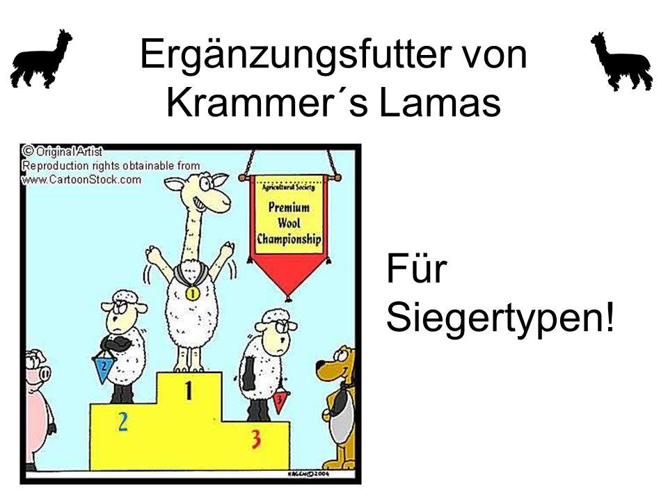 Ergänzungsfutter von Krammer´s Lamas Für Siegertypen!