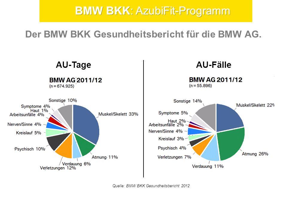 Gesundheitsbericht 2011/2012. Arbeitsunfähigkeiten Niederlassungen nach Alter.