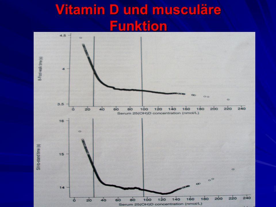 Vitamin D und musculäre Funktion