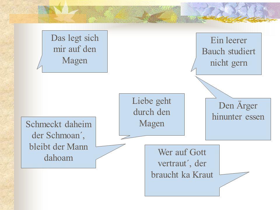 Grundlegendes zur Ernährungspsychologie Ess- & Ernährungsverhalten hängen vom Nahrungsangebot ab Primäre Motive (werden beim NG durch Hunger/Sättigung reguliert, sind angeboren): 1.