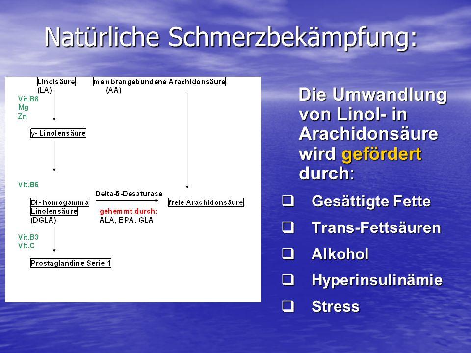Natürliche Schmerzbekämpfung: Die Umwandlung von Linol- in Arachidonsäure wird gefördert durch: Die Umwandlung von Linol- in Arachidonsäure wird geför