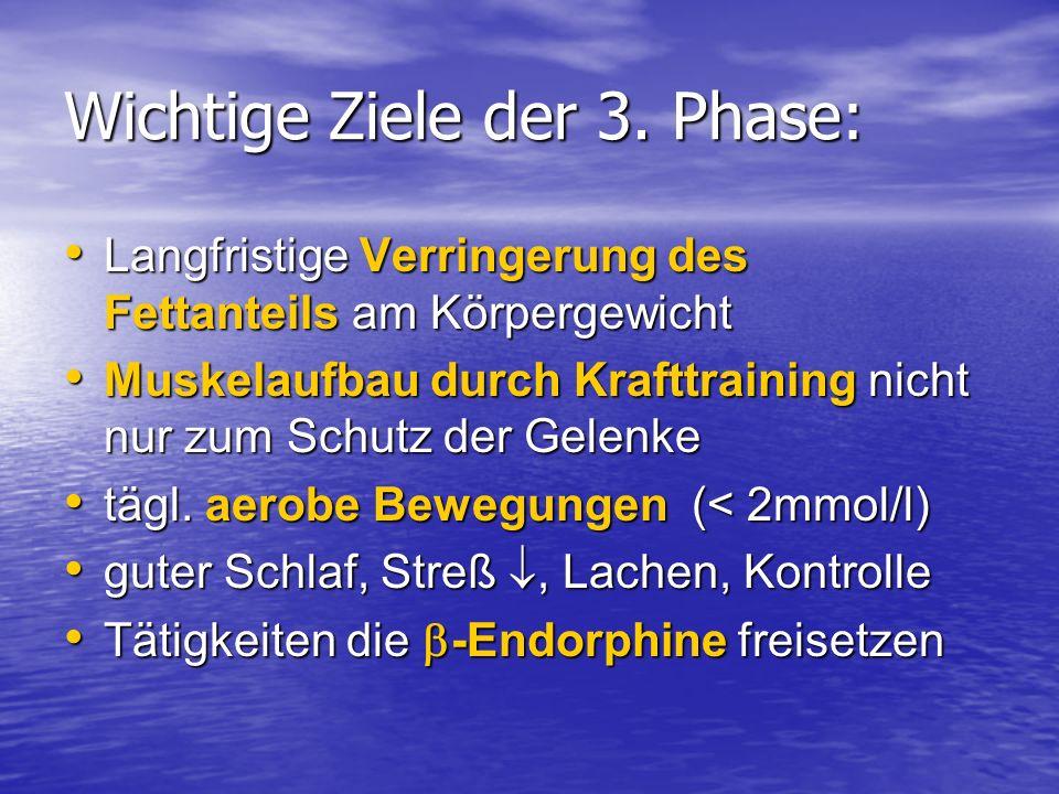 Wichtige Ziele der 3. Phase: Langfristige Verringerung des Fettanteils am Körpergewicht Langfristige Verringerung des Fettanteils am Körpergewicht Mus