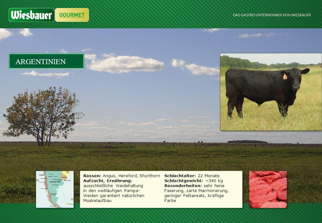 Rassen: Angus, Hereford, Shorthorn Aufzucht, Ernährung: ausschließliche Weidehaltung in den weitläufigen Pampa- Weiden garantiert natürlichen Muskelau