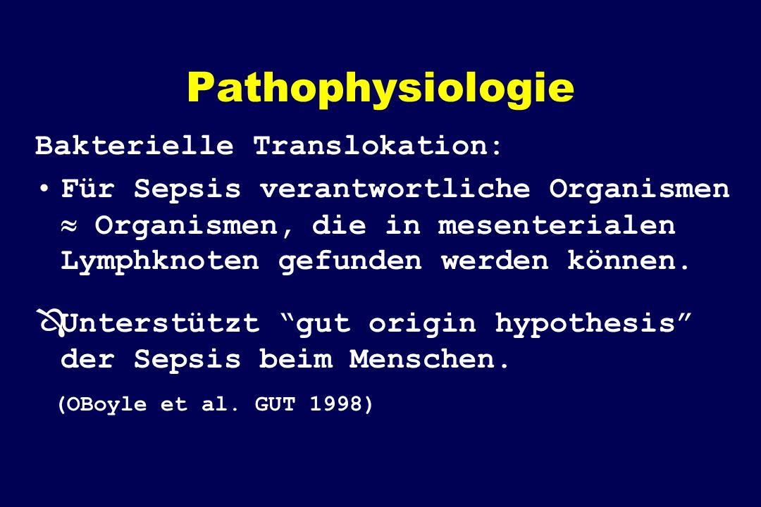 Pathophysiologie Bakterielle Translokation: Für Sepsis verantwortliche Organismen Organismen, die in mesenterialen Lymphknoten gefunden werden können.