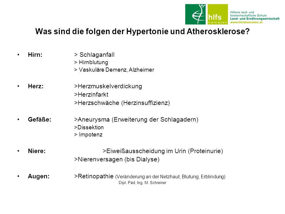 Was sind die folgen der Hypertonie und Atherosklerose? Hirn: > Schlaganfall > Hirnblutung > Vaskuläre Demenz, Alzheimer Herz:>Herzmuskelverdickung >He