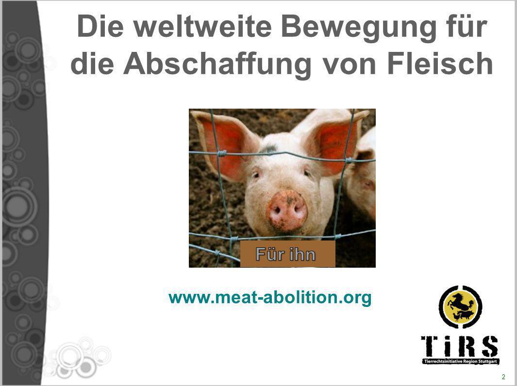 KOLLATERALSCHÄDEN Fleischproduktion mitverantwortlich für Unterernährung, worunter etwa eine Milliarde Menschen leiden Bedrohung oder Zerstörung des Lebensraums von Wildtieren Umweltschäden (globale Erwärmung, usw.) Schädigung der tierischen und menschlichen Gesundheit (Tierseuchen, Zoonosen...) Thema zu breit, um hier ausführlich erläutert zu werden 13