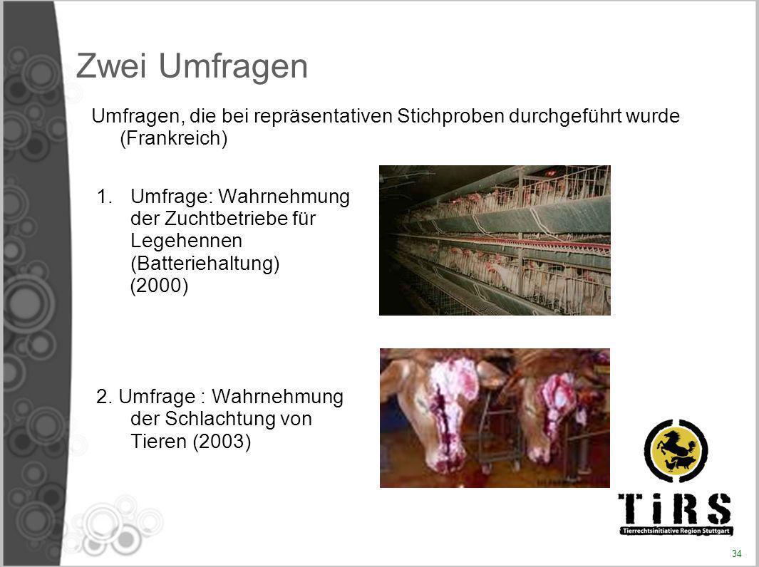 Zwei Umfragen 1.Umfrage: Wahrnehmung der Zuchtbetriebe für Legehennen (Batteriehaltung) (2000) 2. Umfrage : Wahrnehmung der Schlachtung von Tieren (20