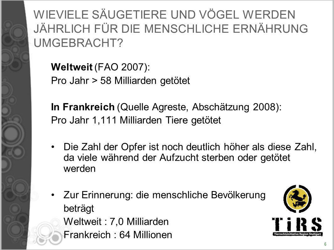 Veröffentlichungen aus dem Jahr 2005 30