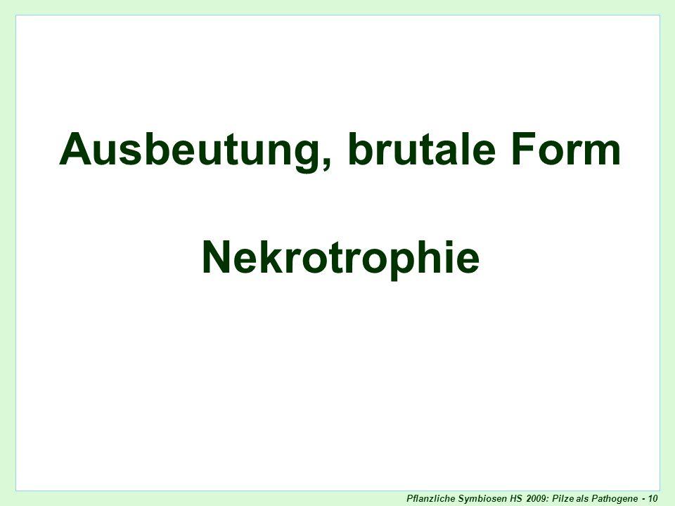 Pflanzliche Symbiosen HS 2009: Pilze als Pathogene - 10 Ausbeutung, brutale Form Nekrotrophie Titelblatt
