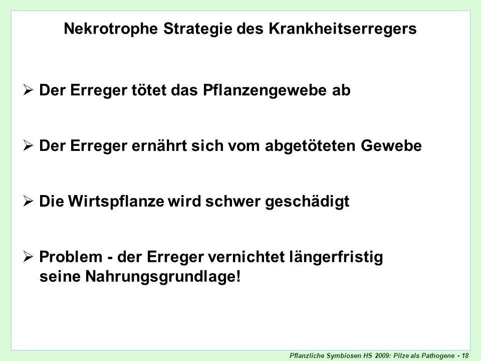 Pflanzliche Symbiosen HS 2009: Pilze als Pathogene - 18 Nekrotrophie Nekrotrophe Strategie des Krankheitserregers Der Erreger tötet das Pflanzengewebe
