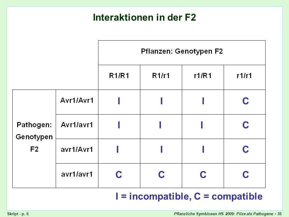 Pflanzliche Symbiosen HS 2009: Pilze als Pathogene - 35 Interaktionen in der F2 Quadratische Checks: F2 IIIC II I C I CI I CCC C I = incompatible, C =