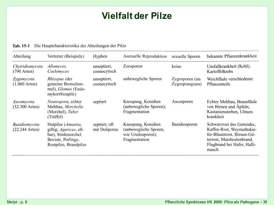 Pflanzliche Symbiosen HS 2009: Pilze als Pathogene - 38 Vielfalt der Pilze Skript - p. 8