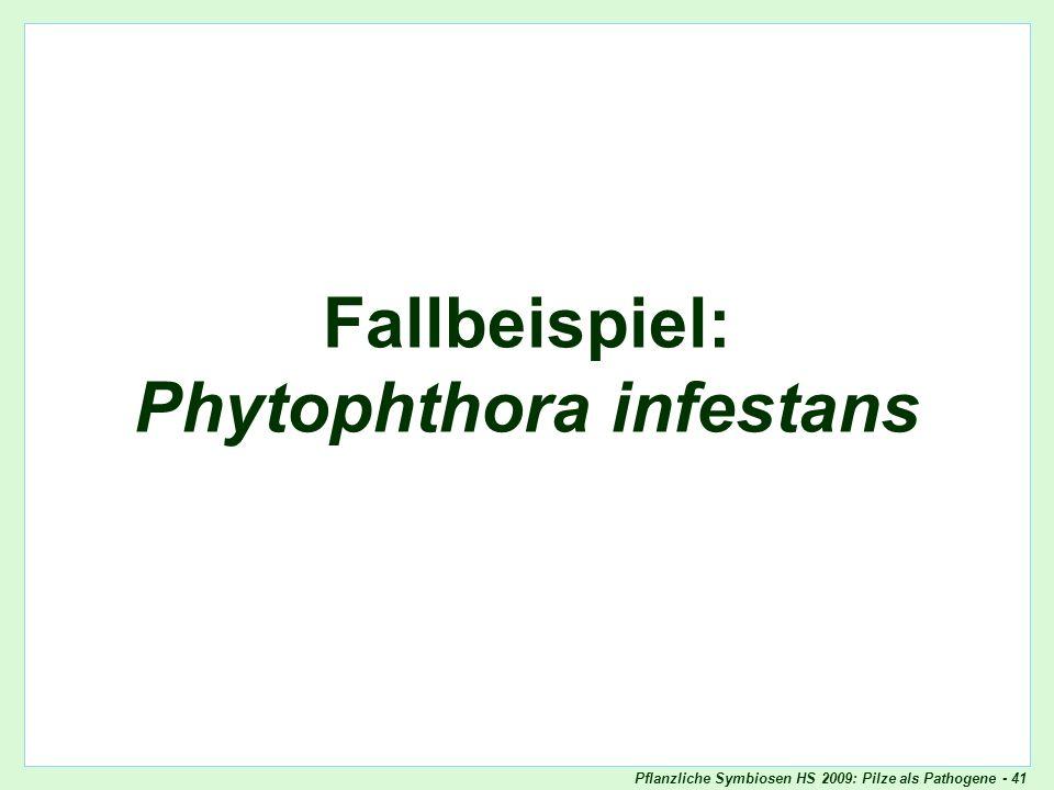 Pflanzliche Symbiosen HS 2009: Pilze als Pathogene - 41 Fallbeispiel: Phytophthora infestans Oomyceten als Pathogene