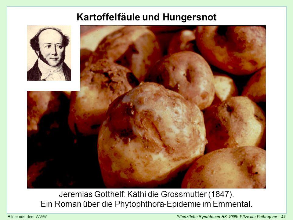 Pflanzliche Symbiosen HS 2009: Pilze als Pathogene - 42 Kartoffelfäule und Hungersnot Jeremias Gotthelf: Käthi die Grossmutter (1847). Ein Roman über