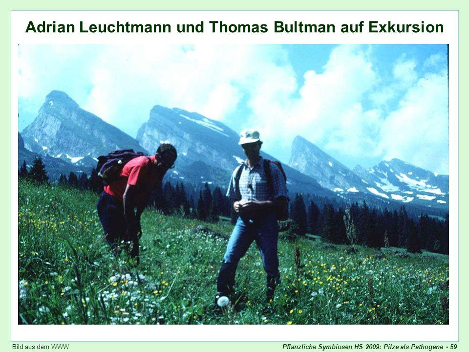 Pflanzliche Symbiosen HS 2009: Pilze als Pathogene - 59 Adrian Leuchtmann und Thomas Bultman auf Exkursion Leuchtmann, Bultman Bild aus dem WWW