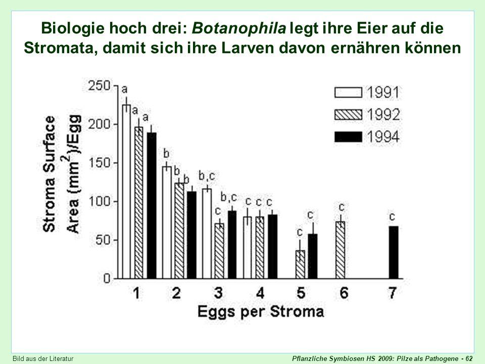 Pflanzliche Symbiosen HS 2009: Pilze als Pathogene - 62 Botanophila Eiablage Biologie hoch drei: Botanophila legt ihre Eier auf die Stromata, damit si