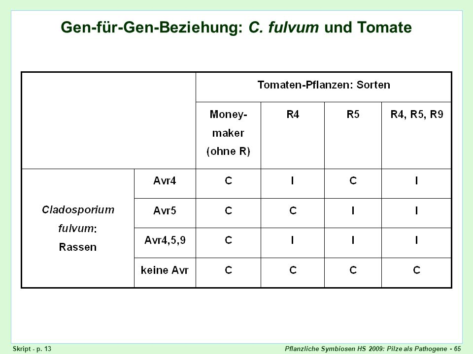 Pflanzliche Symbiosen HS 2009: Pilze als Pathogene - 65 Gen-für-Gen-Beziehung: Cladosporium fulvum und Tomaten Gen-für-Gen-Beziehung: C. fulvum und To