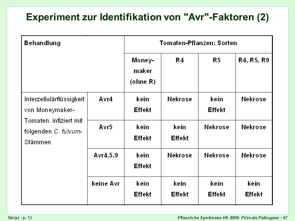 Pflanzliche Symbiosen HS 2009: Pilze als Pathogene - 67 Experiment zur Identifikation von Avr-Faktoren (2) Experiment zur Identifikation von