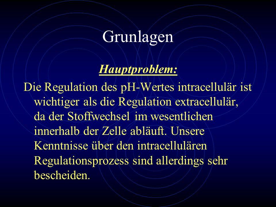 Grunlagen Hauptproblem: Die Regulation des pH-Wertes intracellulär ist wichtiger als die Regulation extracellulär, da der Stoffwechsel im wesentlichen