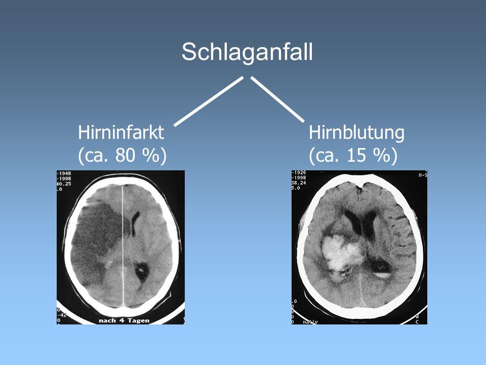 Schlaganfall: Die Versorgungskette Hausarzt Schlaganfall- Station Normalstation Rehabilitationsklinik Patient / Pflegedienst Rettungsdienst