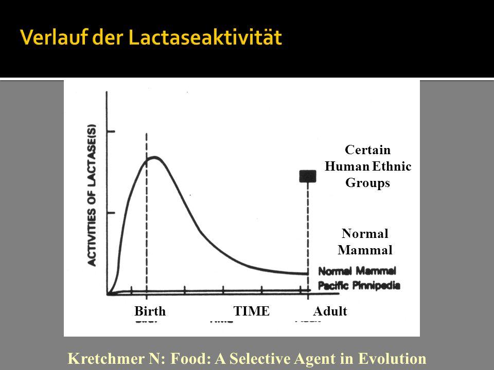 Verlauf der Lactaseaktivität Kretchmer N: Food: A Selective Agent in Evolution Certain Human Ethnic Groups Normal Mammal BirthTIME Adult