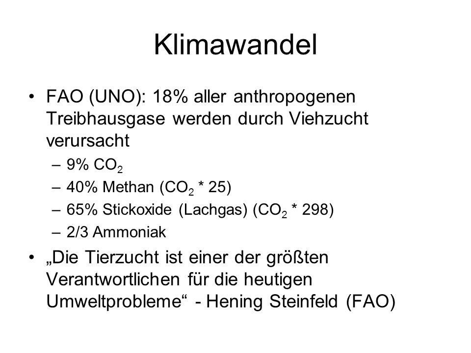 Klimawandel FAO (UNO): 18% aller anthropogenen Treibhausgase werden durch Viehzucht verursacht –9% CO 2 –40% Methan (CO 2 * 25) –65% Stickoxide (Lachgas) (CO 2 * 298) –2/3 Ammoniak Die Tierzucht ist einer der größten Verantwortlichen für die heutigen Umweltprobleme - Hening Steinfeld (FAO)
