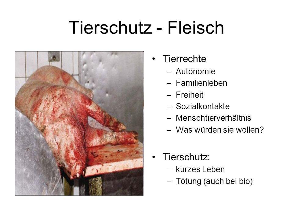 Tierschutz - Fleisch Tierrechte –Autonomie –Familienleben –Freiheit –Sozialkontakte –Menschtierverhältnis –Was würden sie wollen.