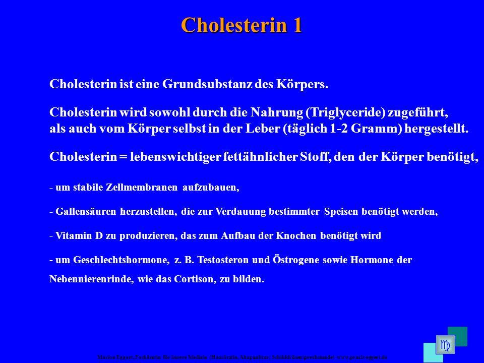 Marion Eggert, Fachärztin für Innere Medizin (Hausärztin, Akupunktur, Schilddrüsensprechstunde) www.praxis-eggert.de Cholesterin 1 Cholesterin ist eine Grundsubstanz des Körpers.