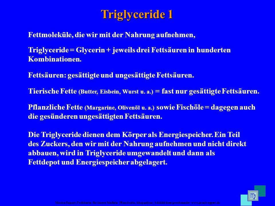 Marion Eggert, Fachärztin für Innere Medizin (Hausärztin, Akupunktur, Schilddrüsensprechstunde) www.praxis-eggert.de Triglyceride 1 Die Triglyceride dienen dem Körper als Energiespeicher.