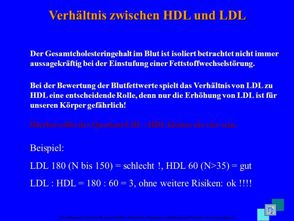 Marion Eggert, Fachärztin für Innere Medizin (Hausärztin, Akupunktur, Schilddrüsensprechstunde) www.praxis-eggert.de Verhältnis zwischen HDL und LDL Hierbei sollte der Quotient LDL : HDL kleiner als vier sein.