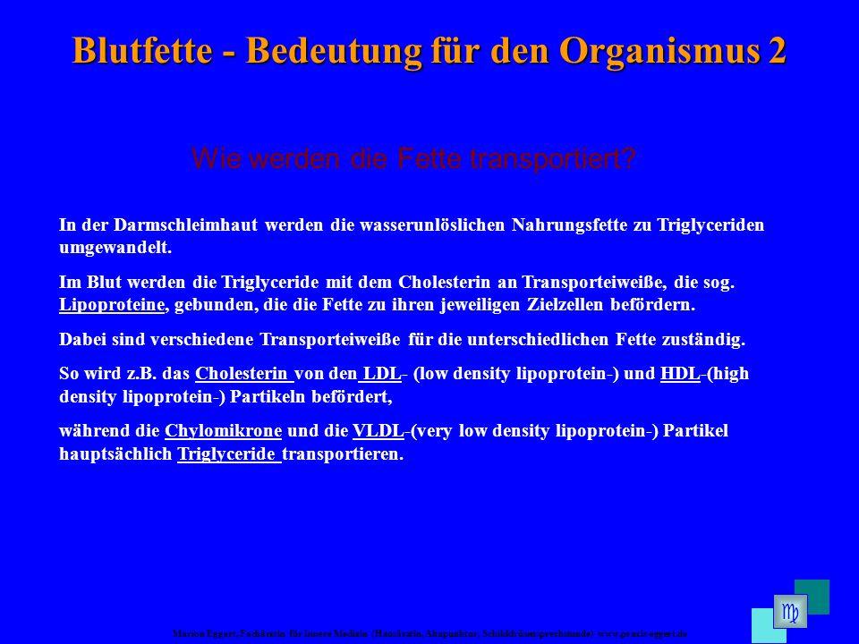 Marion Eggert, Fachärztin für Innere Medizin (Hausärztin, Akupunktur, Schilddrüsensprechstunde) www.praxis-eggert.de Blutfette - Bedeutung für den Org