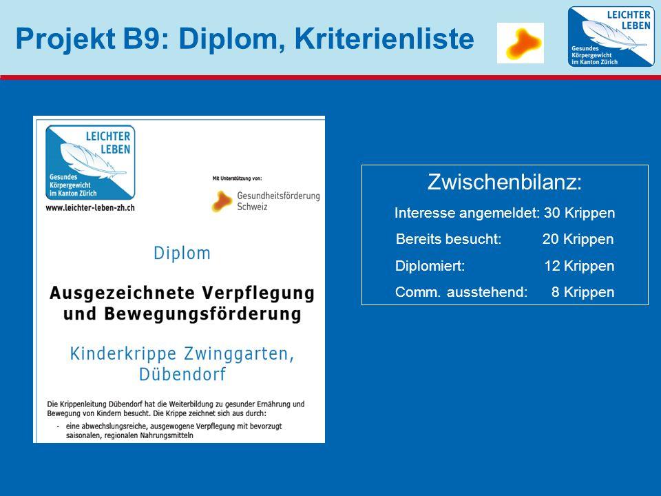 Projekt B9: Diplom, Kriterienliste Zwischenbilanz: Interesse angemeldet: 30 Krippen Bereits besucht: 20 Krippen Diplomiert: 12 Krippen Comm. ausstehen