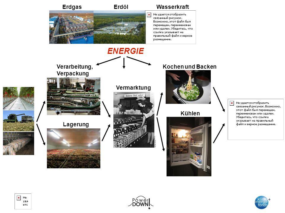 Verarbeitung, Verpackung Lagerung Vermarktung Kochen und Backen Kühlen ENERGIE ErdölErdgas Wasserkraft