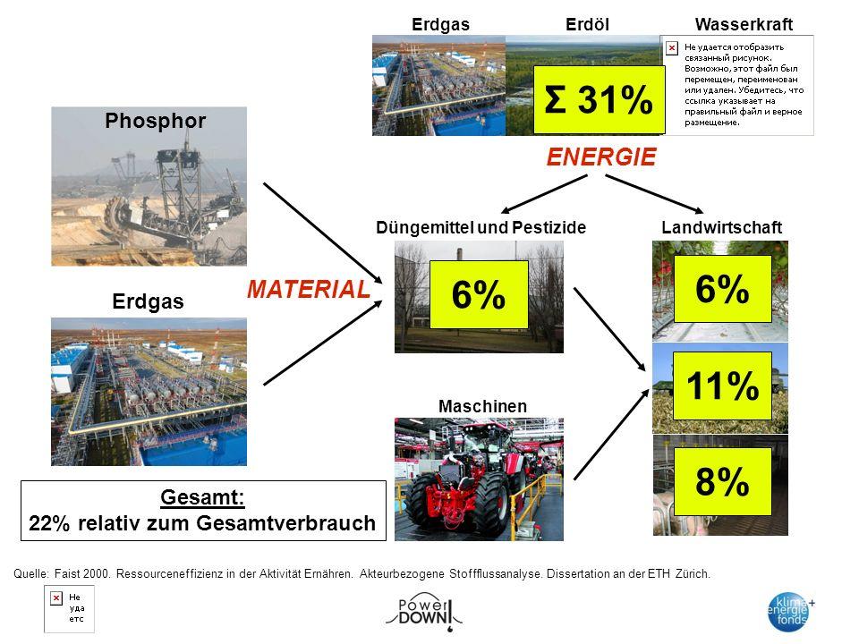 Phosphor ENERGIE ErdölErdgas Wasserkraft Düngemittel und Pestizide Maschinen Landwirtschaft Erdgas MATERIAL 6% 11% 8% 6% Σ 31% Quelle: Faist 2000.