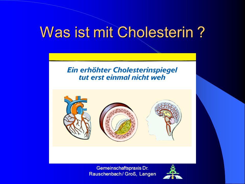Gemeinschaftspraxis Dr. Rauschenbach / Groß, Langen Was ist mit Cholesterin ?