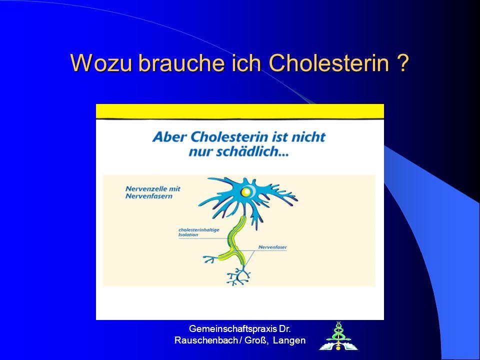 Gemeinschaftspraxis Dr. Rauschenbach / Groß, Langen Wozu brauche ich Cholesterin ?