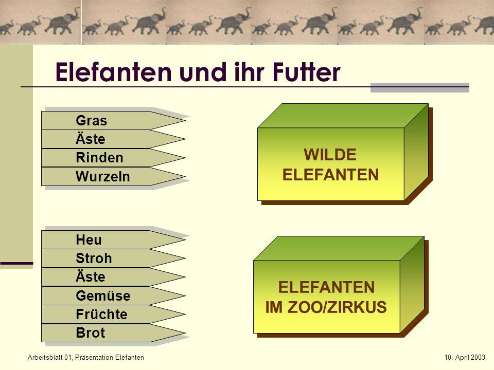 10. April 2003Arbeitsblatt 01, Präsentation Elefanten Elefanten und ihr Futter WILDE ELEFANTEN WILDE ELEFANTEN IM ZOO/ZIRKUS ELEFANTEN IM ZOO/ZIRKUS H