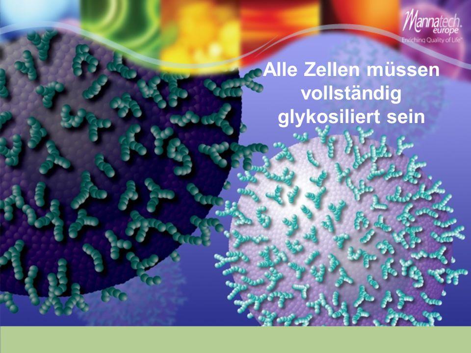 Alle Zellen müssen vollständig glykosiliert sein
