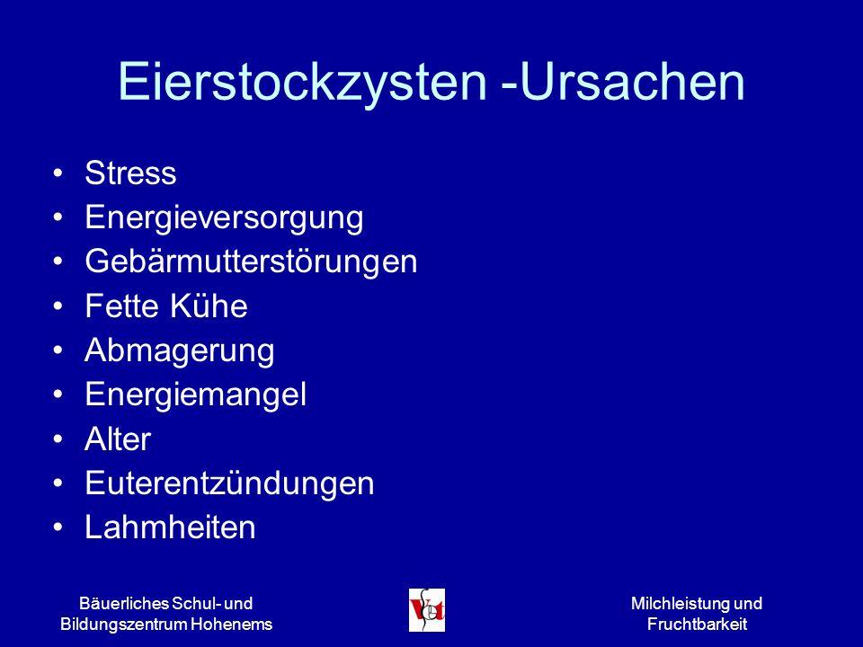 Bäuerliches Schul- und Bildungszentrum Hohenems Milchleistung und Fruchtbarkeit Eierstockzysten -Ursachen Stress Energieversorgung Gebärmutterstörunge