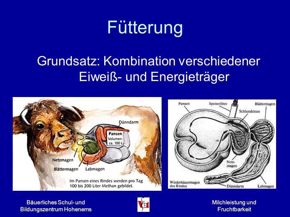Bäuerliches Schul- und Bildungszentrum Hohenems Milchleistung und Fruchtbarkeit Fütterung Grundsatz: Kombination verschiedener Eiweiß- und Energieträg