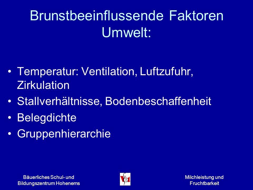 Bäuerliches Schul- und Bildungszentrum Hohenems Milchleistung und Fruchtbarkeit Brunstbeeinflussende Faktoren Umwelt: Temperatur: Ventilation, Luftzuf