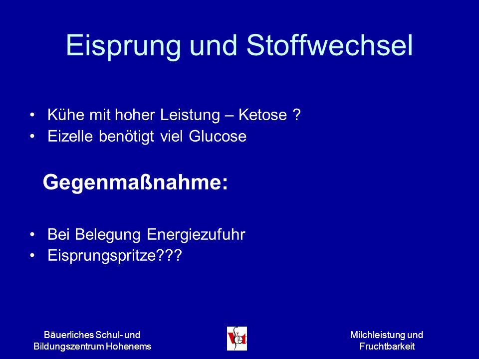 Bäuerliches Schul- und Bildungszentrum Hohenems Milchleistung und Fruchtbarkeit Rationsgestaltung Futtervorlage permanent.