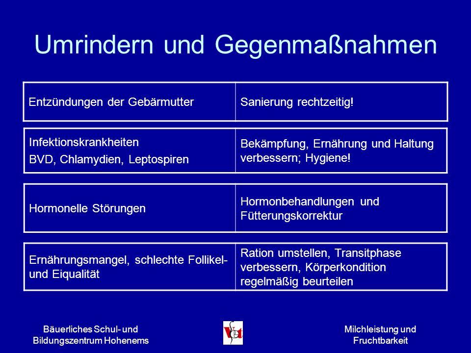 Bäuerliches Schul- und Bildungszentrum Hohenems Milchleistung und Fruchtbarkeit Umrindern und Gegenmaßnahmen Entzündungen der GebärmutterSanierung rec