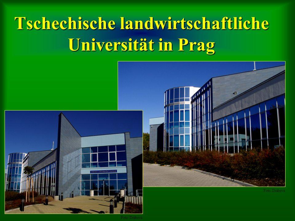 Tschechische landwirtschaftliche Universität in Prag Foto: Drábová