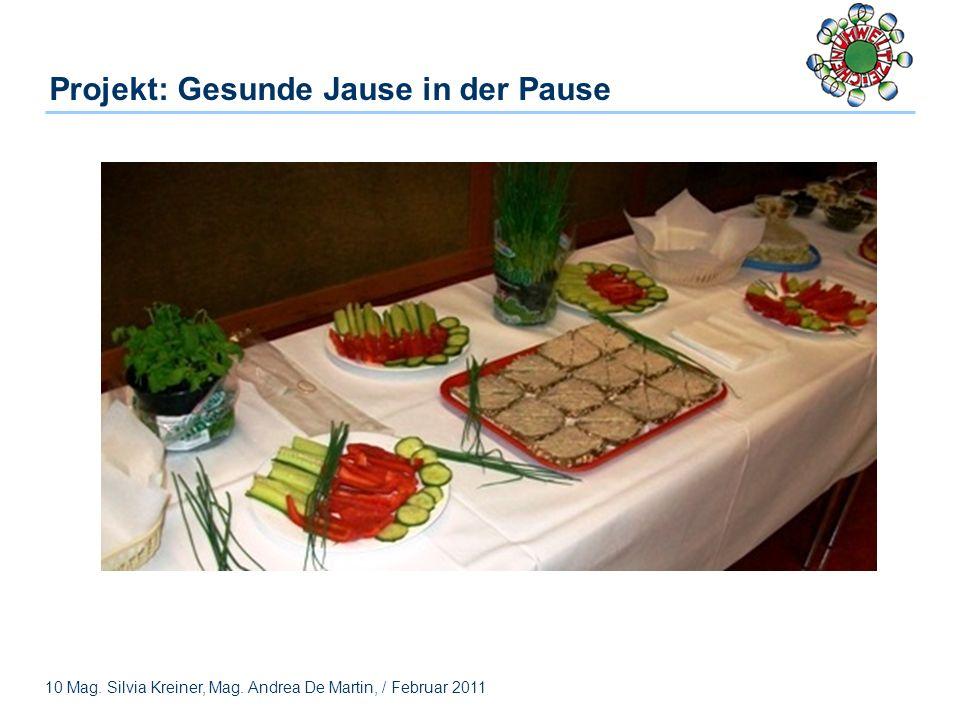 10 Mag. Silvia Kreiner, Mag. Andrea De Martin, / Februar 2011 Projekt: Gesunde Jause in der Pause