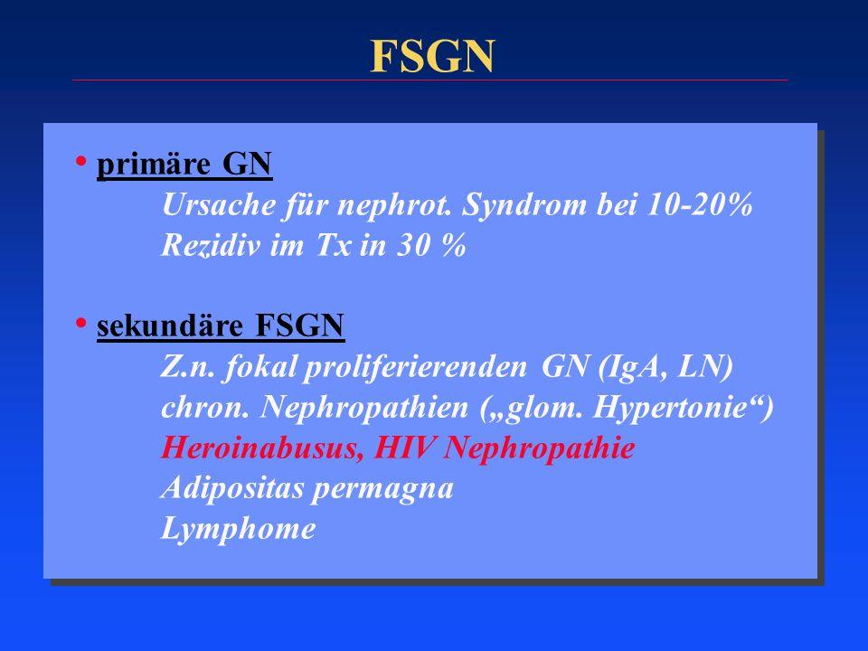 FSGN primäre GN Ursache für nephrot. Syndrom bei 10-20% Rezidiv im Tx in 30 % sekundäre FSGN Z.n. fokal proliferierenden GN (IgA, LN) chron. Nephropat