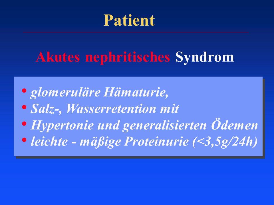 Patient Akutes nephritisches Syndrom glomeruläre Hämaturie, Salz-, Wasserretention mit Hypertonie und generalisierten Ödemen leichte - mäßige Proteinu