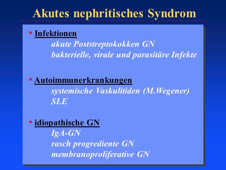 Akutes nephritisches Syndrom Infektionen akute Poststreptokokken GN bakterielle, virale und parasitäre Infekte Autoimmunerkrankungen systemische Vasku